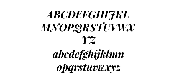 Playfair Display Bold Italic Preview